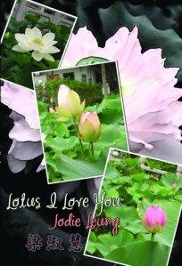 lotus-i-love-you