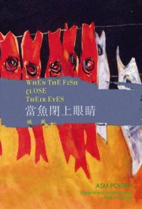 when-the-fish-close-their-eyes
